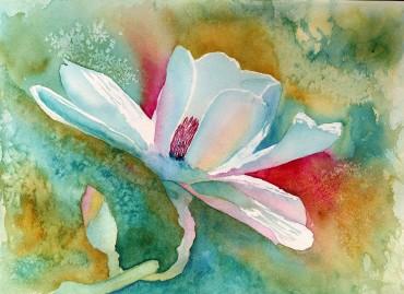 Rainbow-Magnolia